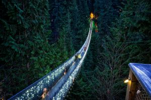 capilano_canyon_lights_fall_2014_005